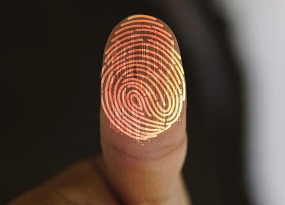 LGPD: 10 pontos para entender a nova lei de proteção de dados no Brasil